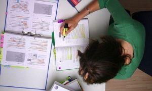 Степень изученности в курсовой работе