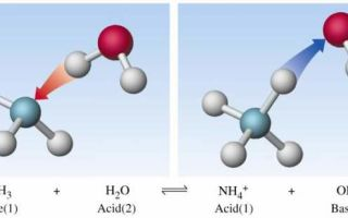 Основания органические и неорганические в химии