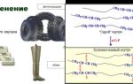 Строение алкадиенов и их особенности (cnh2n-2), схема