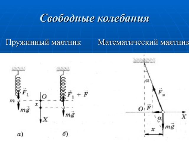 Механические колебания и волны. Конспект лекций