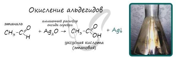 Предельные одноосновные карбоновые кислоты. Сложные эфиры