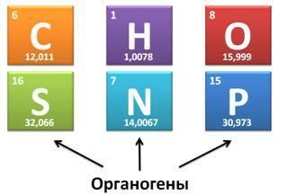 Предмет органической химии