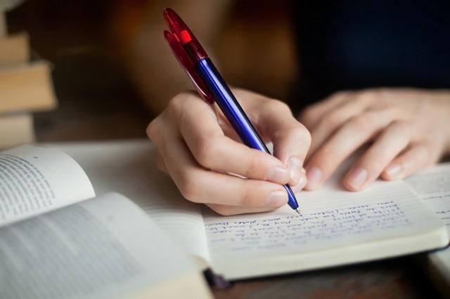 Примеры эссе по литературе