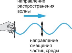 Механические волны в физике