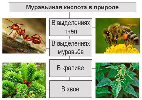 Формула муравьиной кислоты в химии