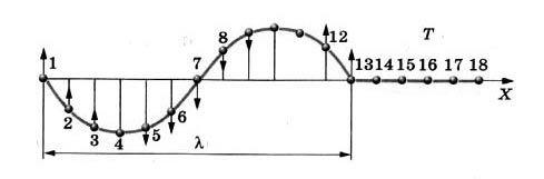 Уравнение бегущей волны в физике