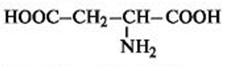 Строение аминокислот, схема и примеры