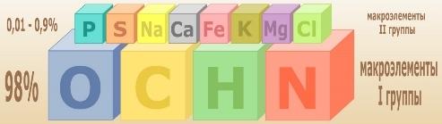 Химические элементы в клетках живых организмов