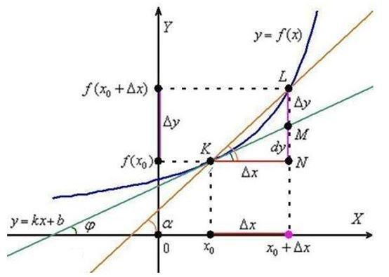 Производная функции: основные понятия и определения