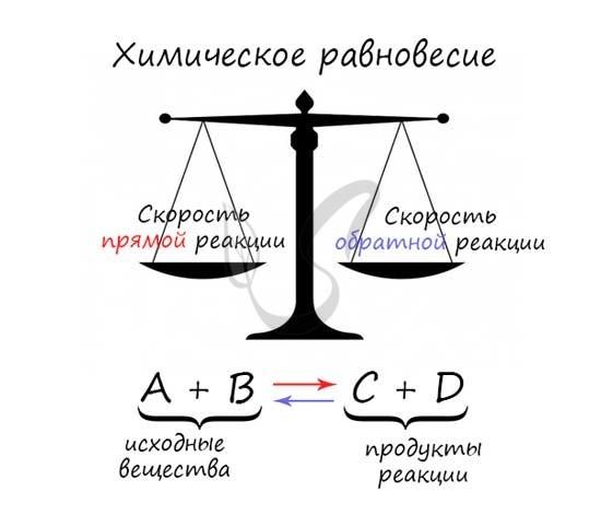 Обратимость химических реакций. Химическое равновесие