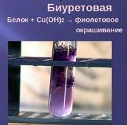 Гидролиз белков, уравнения и примеры