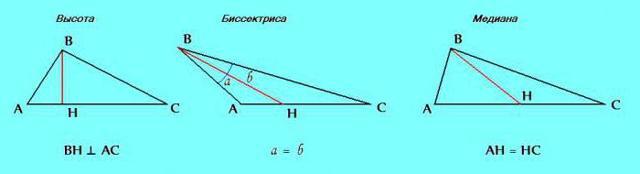 Свойства равнобедренного треугольника, с примерами