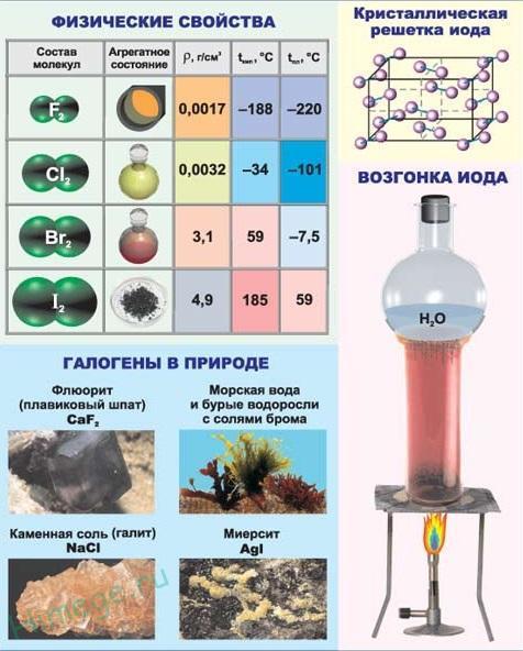Физические и химические свойства галогенов