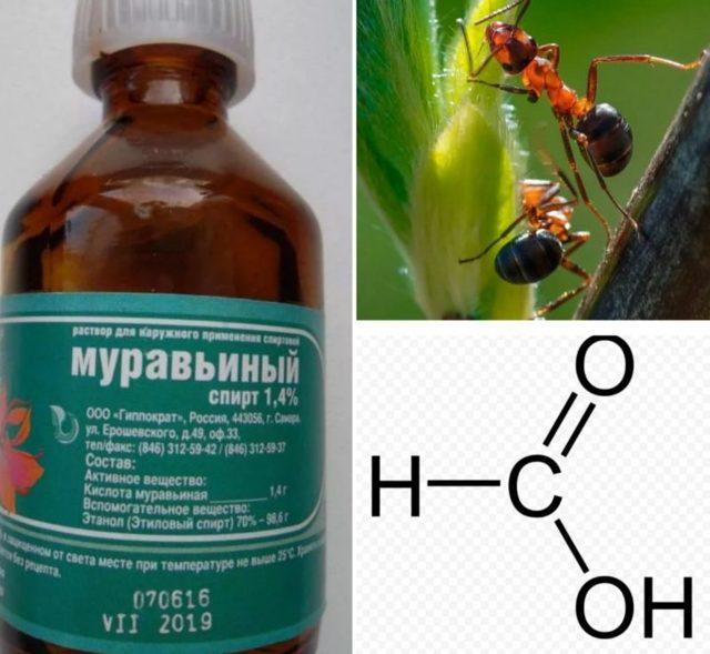 Формула муравьиного спирта в химии