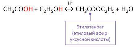 Формула сложного эфира в химии