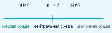 Гидролиз по катиону в химии